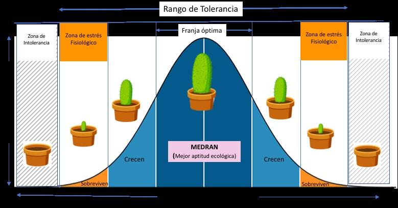 rango de tolerancia